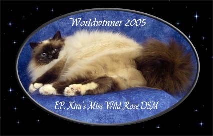 Welcome at the home of World Winner 2005. EP. Kiru's Miss Wildrose. DSM